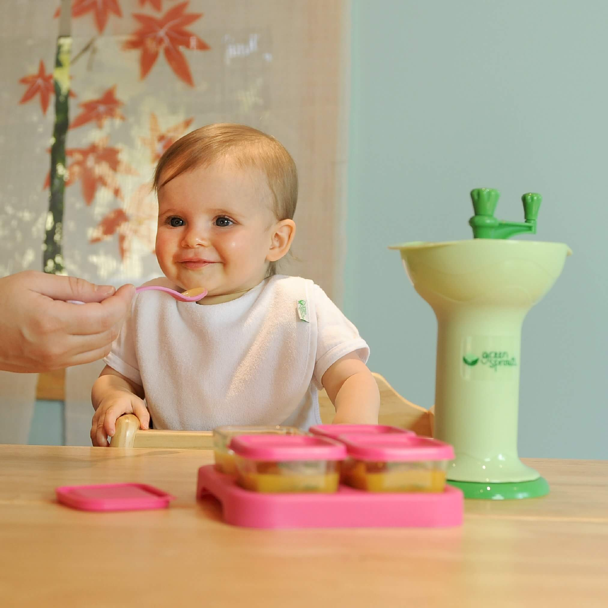 puree baby food, best baby food containers, Green Sprouts Baby Food Mill, baby food maker