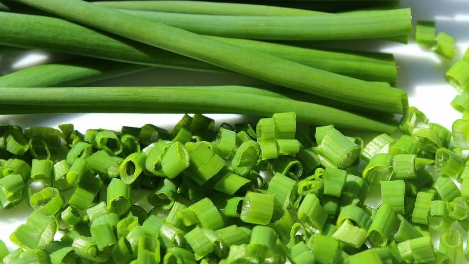 Chives, chive substitute, dried chives substitute, substitute for chives in recipe, substitute for fresh chives, substitute for dried chives, substitute for chives as herbs, alternative to chives