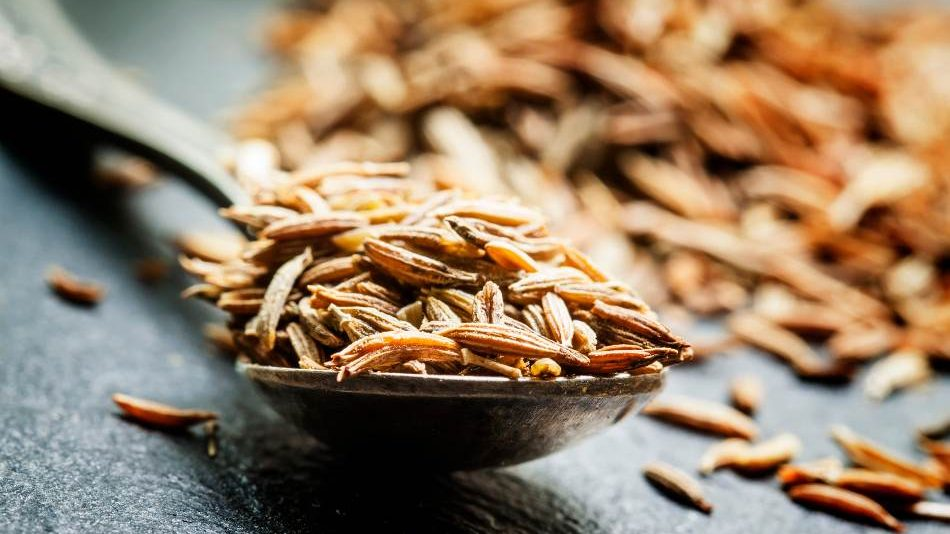 Cumin is the best substitute for coriander all time. coriander substitute,
