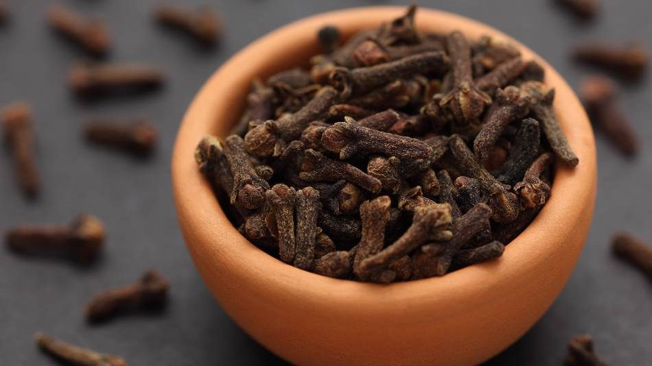 Cloves is a good choice for coriander seed substitute. substitute for cloves cinamon stick coriander seeds and chili peppers